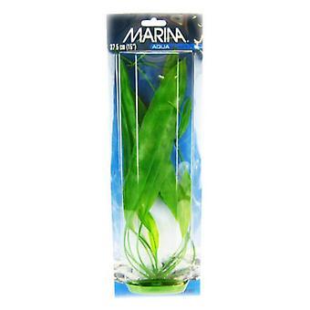 """Marina Amazon Miekkakasvi - 15"""" Pitkä"""