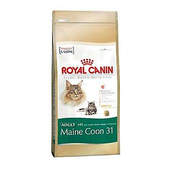 Royal Canin félin Maine Coon Cat Food Mix 4kg à sec
