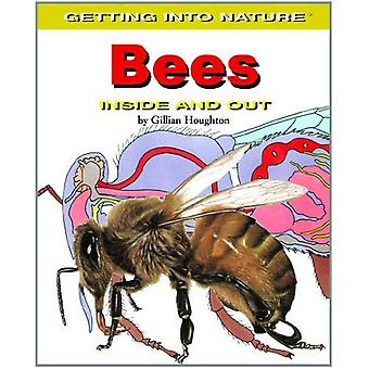 Bees: Inside and Out (Getting Into Nature)