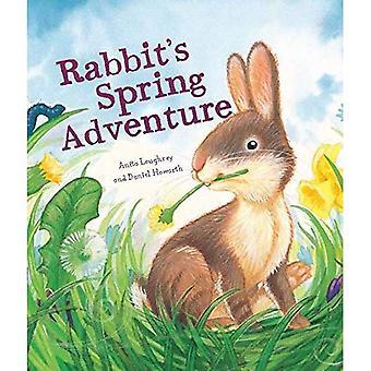 Les saisons animaux: Printemps aventure lapin