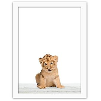 Picture In White Frame, Little Lion 3