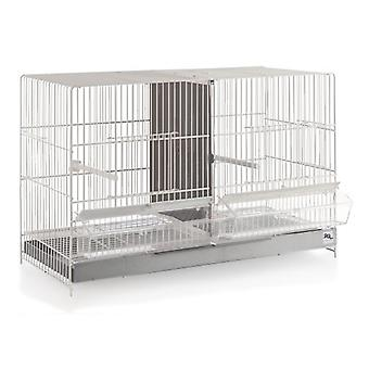 RSL Bird Breeding Cage 3402 (Birds , Cages and aviaries , Cages)