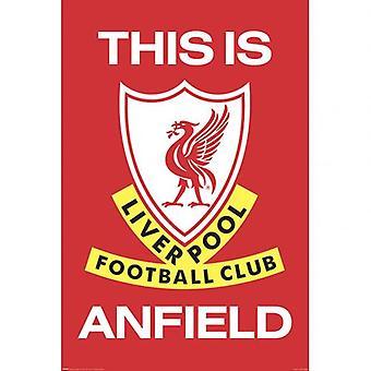 Liverpool Poster TIA 29