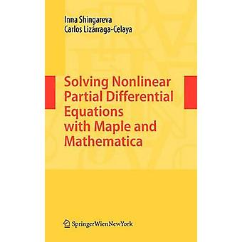 インナ・シンガレヴァヴァカルロス・リザラガセラヤによる非線形偏微分方程式の解法