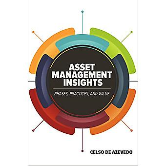 Asset Management Insights - Phases - Practices - and Value by Celso de