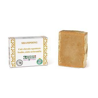 Kiinteä hilseilevä päänahka shampoo 100 g