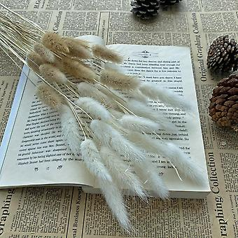 30Pcs dekoration small reed natural dried small pampas grass phragmites artificial plants wedding flower bunch for home decor