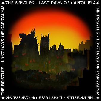 Bristles - Last Days of Capitalism [Vinyl] USA import