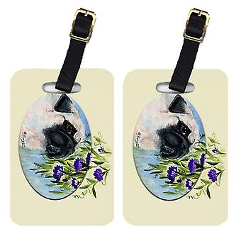 Carolines Treasures  SS8064BT Pair of 2 Pug Luggage Tags