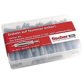 Meister-caja de Fischer SX surtidos clavijas 41648 132 piezas
