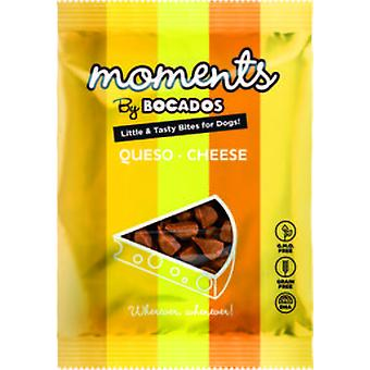 Moments Moments  Dog Queso 60G (Dogs , Treats , Chewy and Softer Treats)