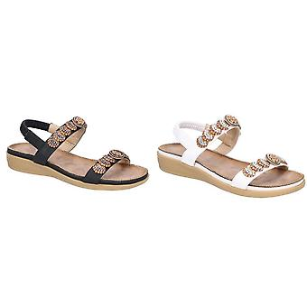 Fleet & Foster Womens/Ladies Java Sandal