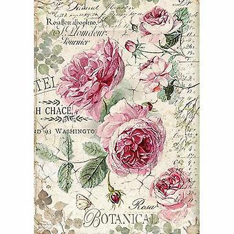 ورقة الأرز A4 الورود الإنجليزية النباتية (DFSA4358)