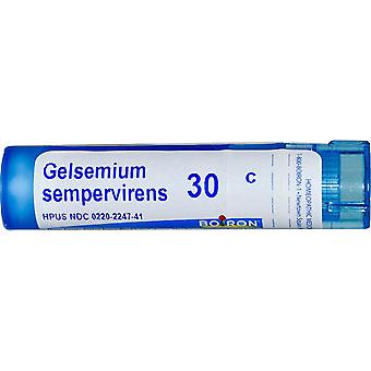 Boiron, Single Remedies, Gelsemium Sempervirens, 30C, Approx 80 Pellets
