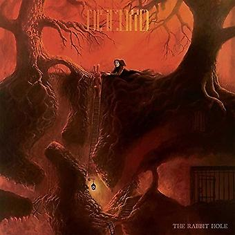 Great Discord - Rabbit Hole [CD] USA import