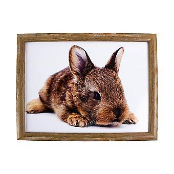 Lap cushion Lying rabbit