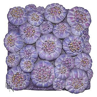 Nemesis nu Purple Sun Coral 21,5 cm
