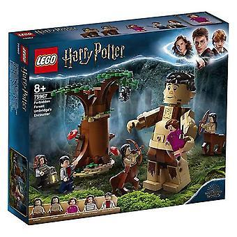 Playset Harry Potter Lego