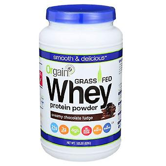 Orgain Orgain Grass Fed Whey Protein Powder, Chocolate Fudge 1.82 lbs(case of 3)