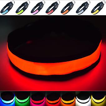 Super Bright USB Rechargeable LED Dog Safety Collar - Great Visibility & Improved Safety - 4