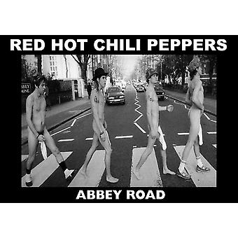 Red Hot Chili Peppers Abbaye Rd Abbey Road affiche Poster Print