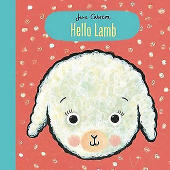 Hello Lamb by Jane Cabrera - 9781499804300 Book