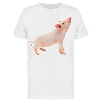 Studio Pig Tee Menn's -Bilde av Shutterstock