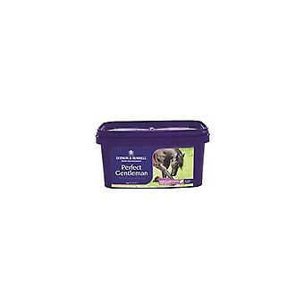 Dodson & Horrell Perfect Gentleman Horse Supplement