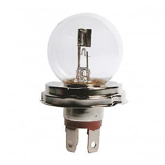 ampoule duplo 40/45 Watts chacun dans la boîte