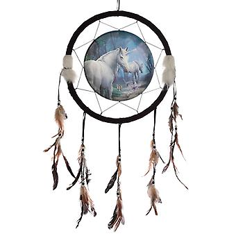 Decorative Lisa Parker The Journey Home 33cm Dreamcatcher X 1 Pack