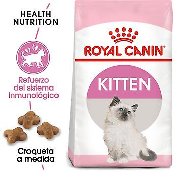 Royal Canin Kitten  Food (Cats , Cat Food , Dry Food)