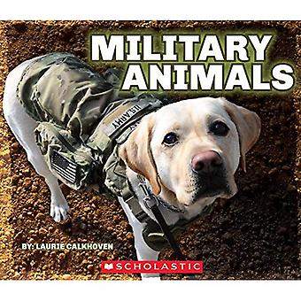 Animaux militaires avec Dog Tags