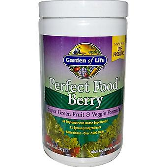 Garden of Life Perfect Food Berry 240 g