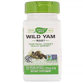 Nature-apos;s Way, Racine de yam sauvage, 850 mg, 100 capsules végétaliennes