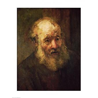 Head of an Old Man c1650 Poster Print by Rembrandt van Rijn