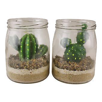 Sett med 2 kaktus te lys i glass krukker