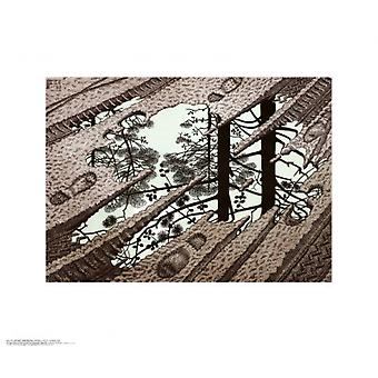 Puddle Poster Print by MC Escher (26 x 22)