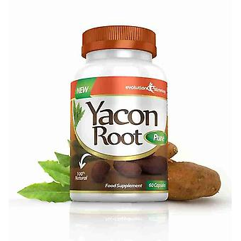Yacon Root Pure 500mg - 120 Capsules - Fat Burner and Appetite Control - Evolution Slimming