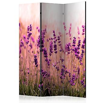 3-teiliges Paravent - Lavender in the Rain [Room Dividers]