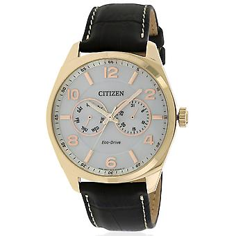Citizen Eco-Drive Gold-Tone in pelle Mens Watch AO9023-01A