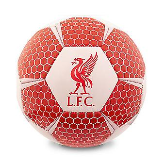 Liverpool Size 5 Colour Football