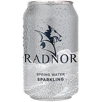 Radnor Hills Sparkling Spring Water Cans