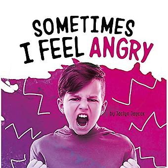 Sometimes I Feel Angry (Name Your Emotions)