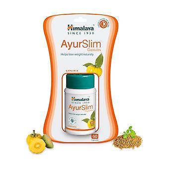AyurSlim 60 capsules