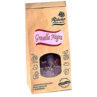 Ribero Currant (Small pets , Dry Food and Mixtures)