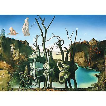 Eurographics Swans Reflecting Elephants Jigsaw Puzzle (1000 Pieces)
