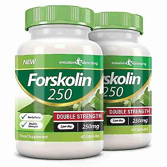 Forskolin 250 Double Strength 250mg 60 Weight Loss Capsules - 120 Capsules - Fat Burner and Metabolism Booster - Evolution Slimming
