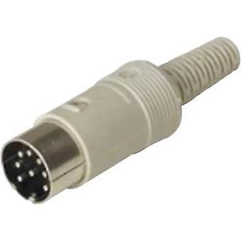Hirschmann 930 014-517-1 Conector DIN Plug, número reto de pinos: 3 Grey 1 pc(s)