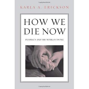 Hoe We nu sterven: Intimiteit en het werk van het sterven