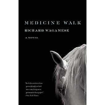 Medicine Walk by Richard Wagamese - 9781571311160 Book